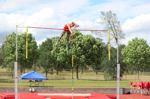 Pole Vault - LP Small