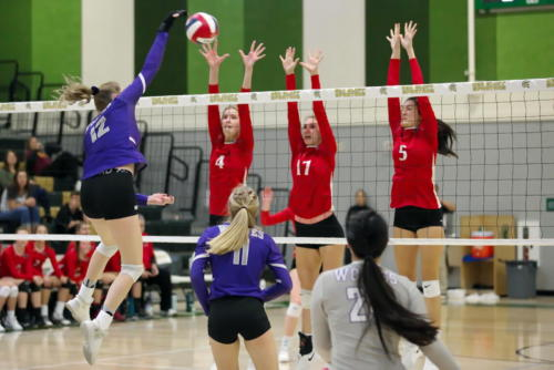 Courtney Oilar (12) of Shasta attempts to spike the ball past th